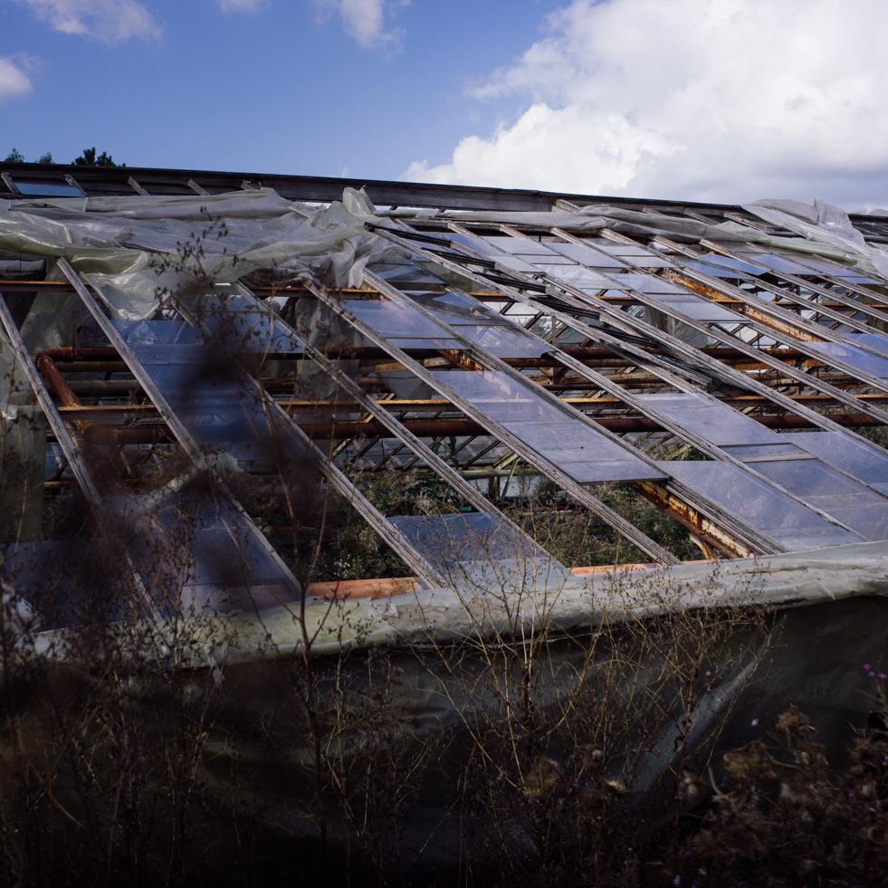 Le toit de la serre